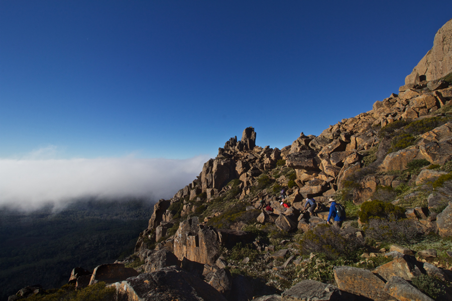 Hikers on Mt Ossa, Tasmania